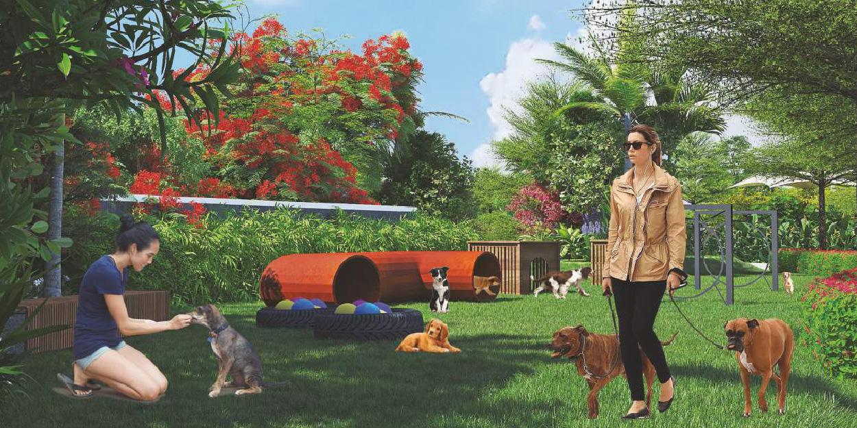 Pets Park